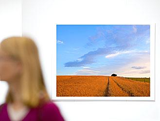 Niederrhein Foto Raumgestaltung Landschaft Natur
