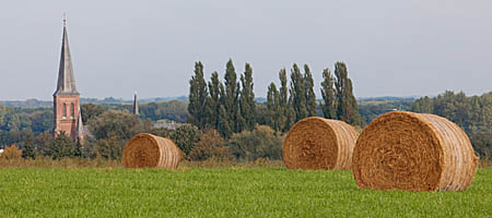 Niederrhein Fotoarchiv Naturfotografie Bildarchiv